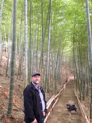 Mr. Barka in bamboo forest