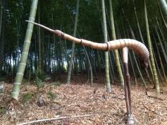 bambusfugl