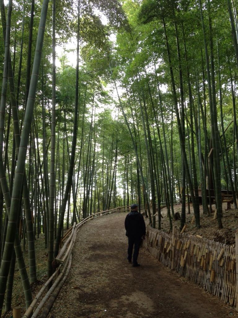 Trond og Doggie rusler i Bamboo Park