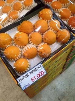 13 appelsiner til 430 kr